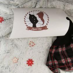 Boite cadeau de Noël, motif chat avec un bonnet de Père Noël, Tribu de chats, présentation
