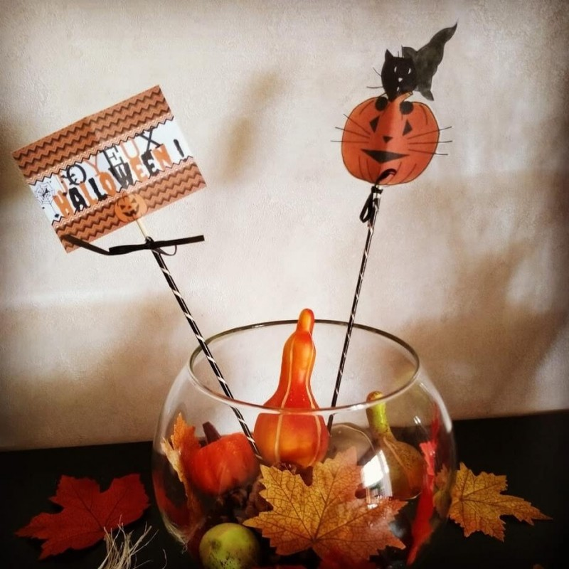 Piques décoratives pour corbeille à bonbons Halloween, chat sorcier et citrouille, photo, Tribu de chats