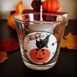 Photophore Halloween, chat sorcier et citrouille, verre,photo, Tribu de chats