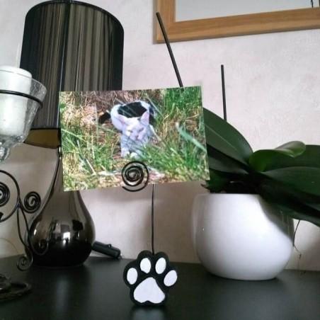 Porte-photos patte de chat, photo exemple, Tribu de chats