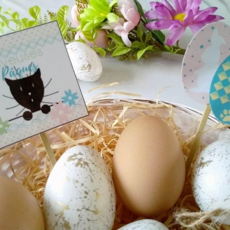 Piques et corbeille à chocolats de Pâques, chat et oeufs,Tribu de chats