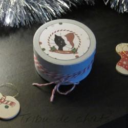 Boite décorative de Noël, motif chat avec un bonnet de Père Noël, Tribu de chats