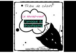 Une vraie boutique française pour les fans de chats pour ne plus se faire avoir par le dropshipping!